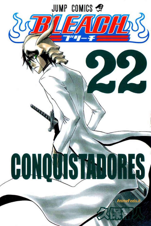 Bleach Manga 5