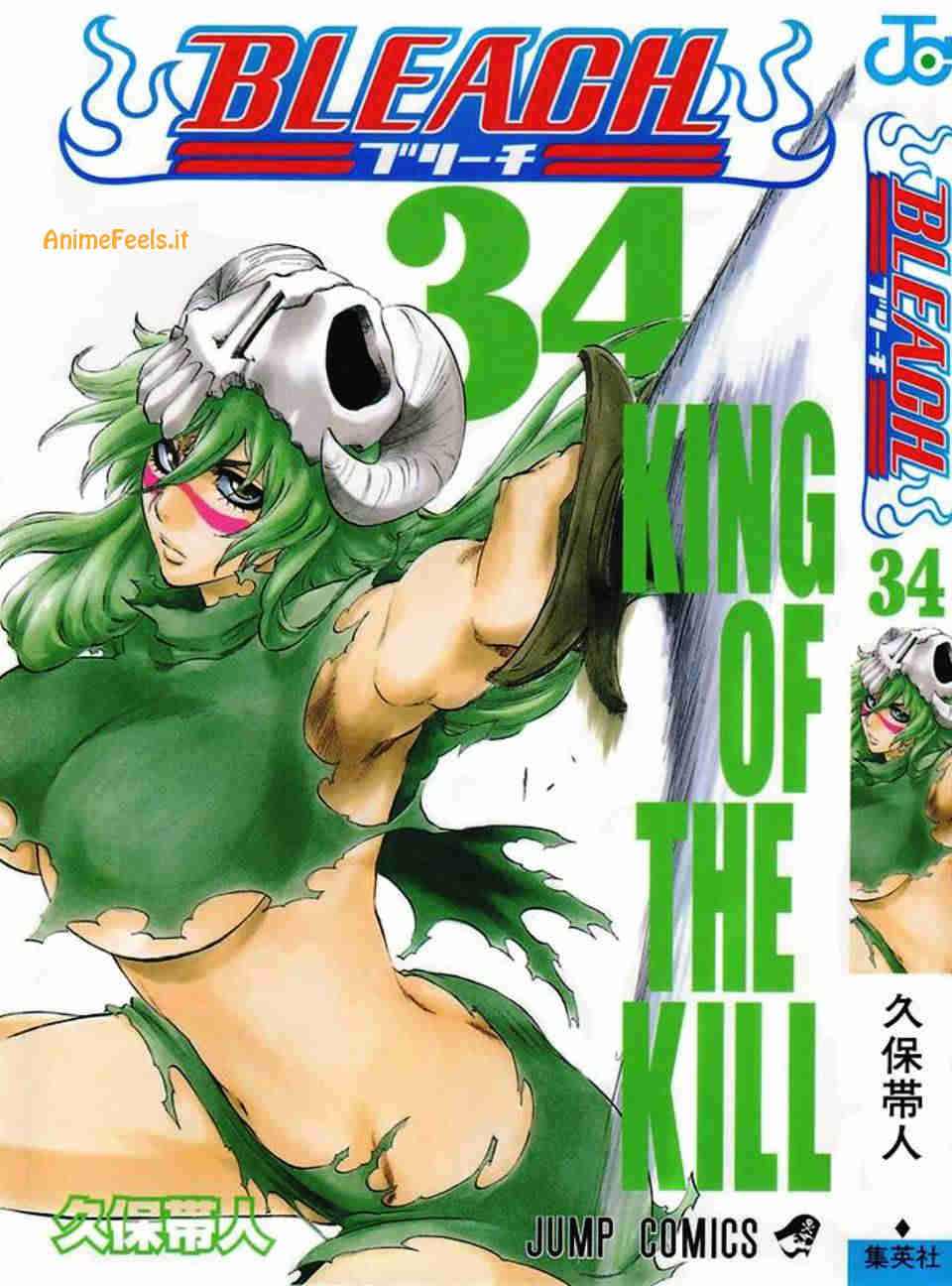 Bleach Manga 6