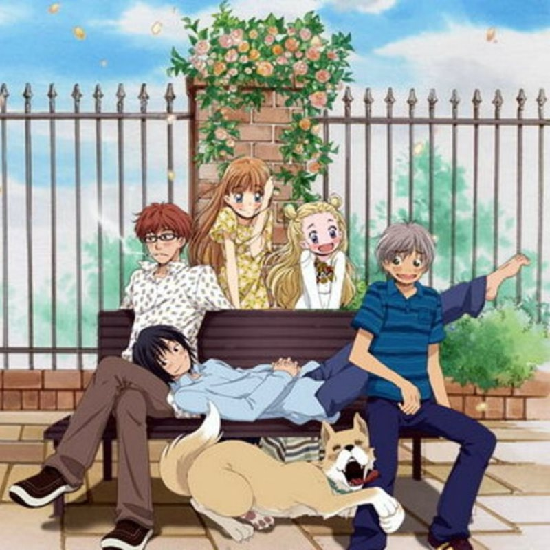 Header - Honey and Clover