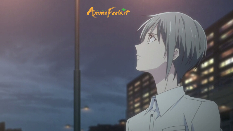 Fruits Basket 2019 4